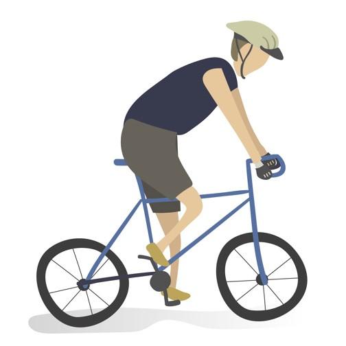 adventure rentals - biking